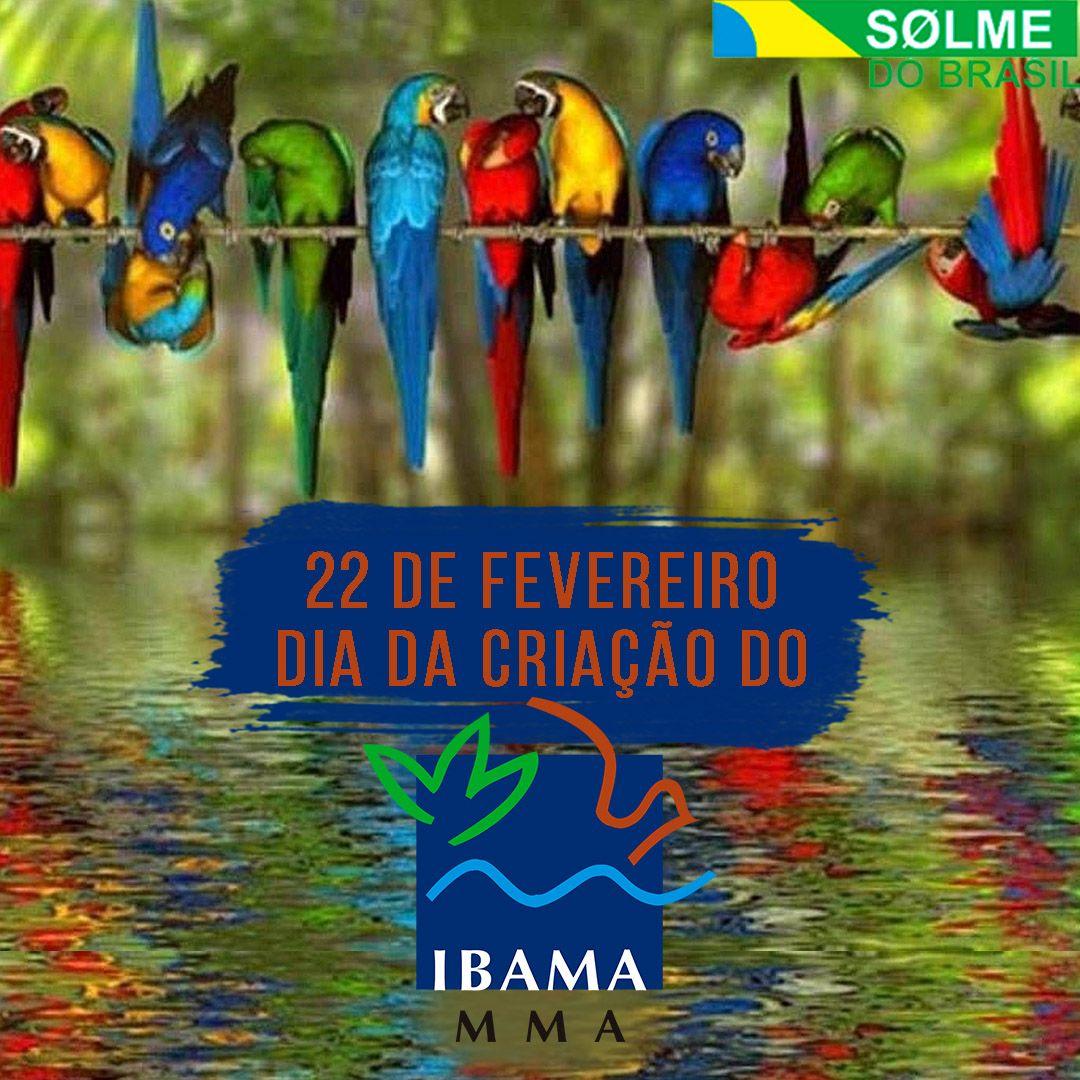 22 de fevereiro dia da criação do IBAMA