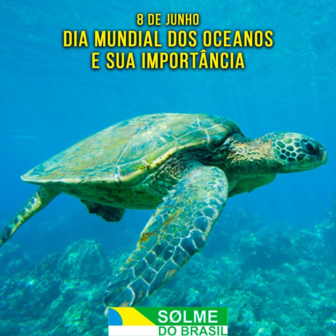 08 de junho - O Dia Mundial dos Oceanos e sua importância